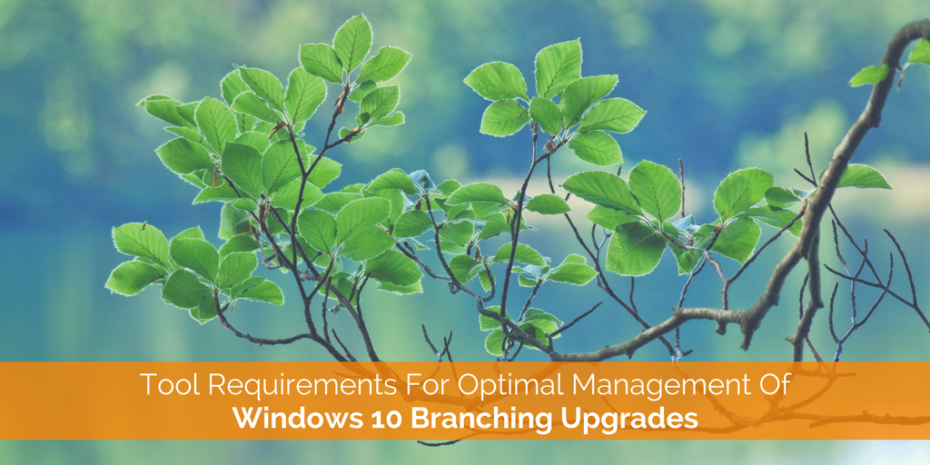 What Are The Tool Requirements For Optimal Windows 10 Branching Upgrade Management.png