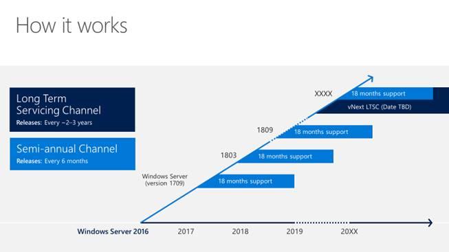 Windows10SericingOptions.png