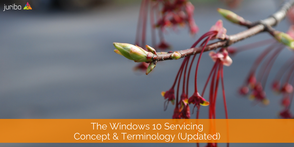 Windows10ServicingBasics